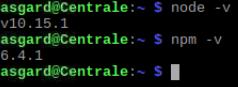 Versions Node npm